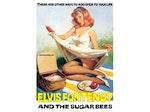 Elvis Fontenot & The Sugar Bees artist photo