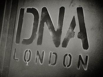 DNA venue photo