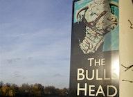 The Bull's Head artist photo