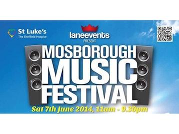 Mosborough Music Festival picture