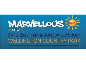 Marvellous Festival 2014 picture