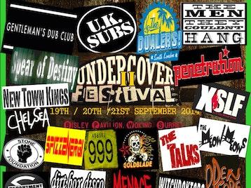 The Undercover Festival 2014 picture