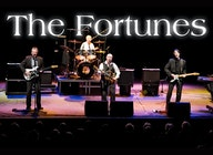 The Fortunes artist photo