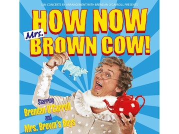 How Now Mrs Brown Cow: Mrs Brown's Boys, Brendan O'Carroll picture