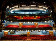 Cambridge Theatre artist photo
