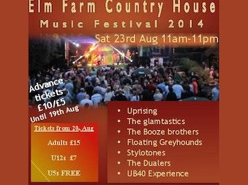 Elm Farm Music Festival 2014 picture