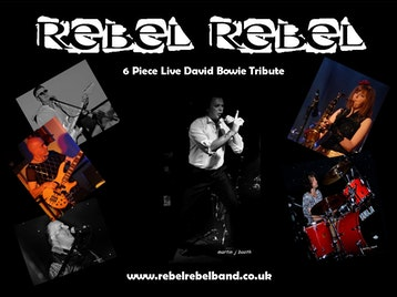 Rebel Rebel artist photo