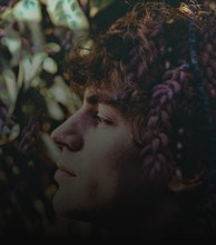 Cosmo Sheldrake artist photo