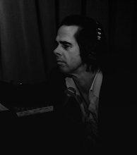 Nick Cave artist photo