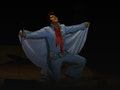 A Vision of Elvis: Rob Kingsley event picture