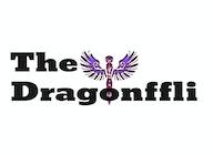 The Dragonffli artist photo