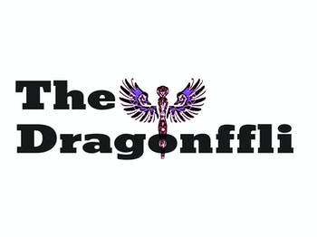 The Dragonffli venue photo