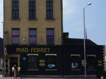 The Ferret venue photo