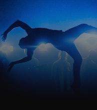 Earthfall Dance Company artist photo