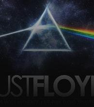 Just Floyd artist photo