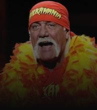 Hulk Hogan artist photo