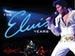 The Elvis Years 1954-1977 event picture