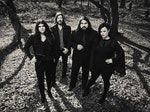 The Magic Numbers artist photo
