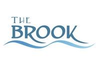 Brook Theatre artist photo