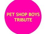 Pet Shop Boys Tribute artist photo
