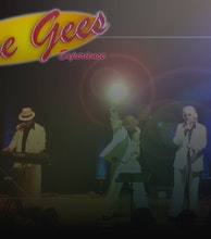 The Bee Gees Experience artist photo