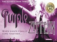 Purple Zeppelin artist photo