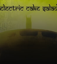 Electric Cake Salad artist photo