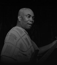 Dennis Bovell artist photo