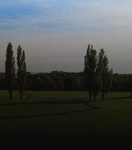 Heaton Park artist photo