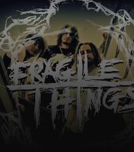 Fragile Things artist photo