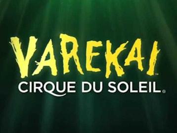 Varekai: Cirque Du Soleil picture