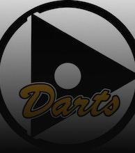 Darts artist photo
