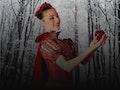 Snow White: Vienna Festival Ballet event picture