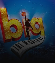 Big - The Musical artist photo