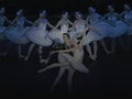 Swan Lake: Saint Petersburg Classic Ballet event picture