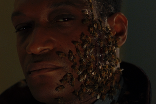 Image for Candyman (1992)