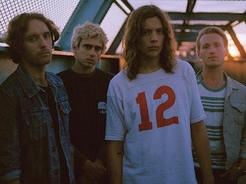 The Last Days Of Punk Tour: Vant picture