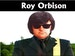 Roy Orbison Tribute Night: Iain Sparks event picture