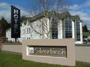 Image result for silver birch omagh