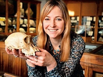 Digging Into Britain's Past: Professor Alice Roberts picture