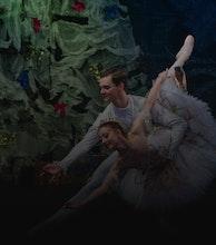 Russian National Ballet artist photo