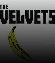 The Velvets artist photo