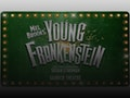 Young Frankenstein: Lesley Joseph, Hadley Fraser event picture