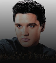 Elvis In Concert - Live On Screen artist photo
