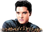 Elvis In Concert - Live On Screen artist photo