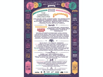 Blissfields 2017 picture