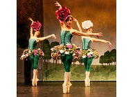Ballet Theatre UK artist photo