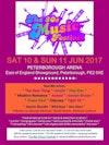 Flyer thumbnail for The 80s Music Festival