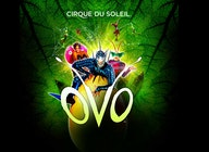 Cirque Du Soleil: Up to 30% off Family tickets!