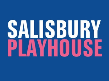 Salisbury Playhouse venue photo